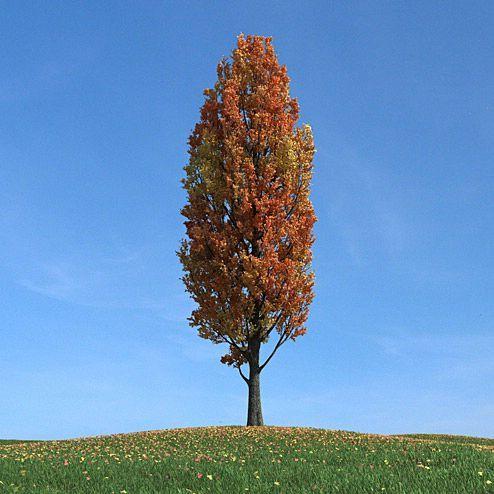 دانلود مدل درخت سه بعدی تری دی مکس وی ری آماده رندر 8356
