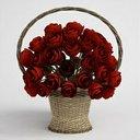 مدل دستشویی گلدان در تلویزیون آی پد درخت گل صندلی نان میوه لوستر ماکروفر یخچال