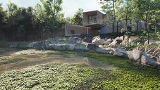 دانلود رندر ویلا جنگلی دریاچه برکه درخت جنگل ویلا چوبی رندر روز