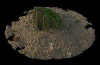 مدل سه بعدی جنگل درخت کنده درخت هیزمتنه درخت سنگ