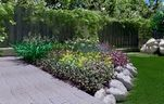 مدل گیاهان باغ تزئینی