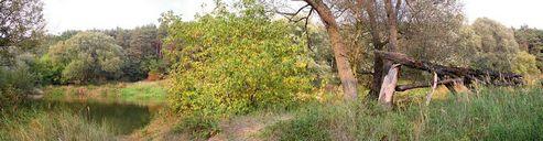 عکس کیفیت بالا منظره رودخانه خارج شهر کوه پاییز جنگل درخت غروب دریاچه