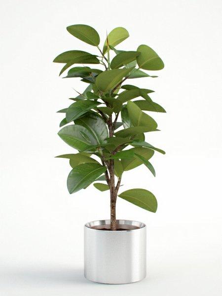 جاگلدانی فلزی مدل آراز سیمین گل
