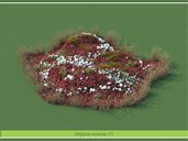 مدل سه بعدی باغچه سنگ گل بوته پارک چمن لندسکیپ شمشاد پارک وی ری تری دی مکس