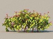 مدل سه بعدی گل لندسکیپ چمن چمنزار بوته درختچه باغچه وی ری تری دی مکس