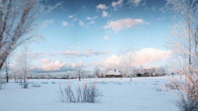 مدل سه بعدی درخت زمستان برف وی ری تری دی مکس